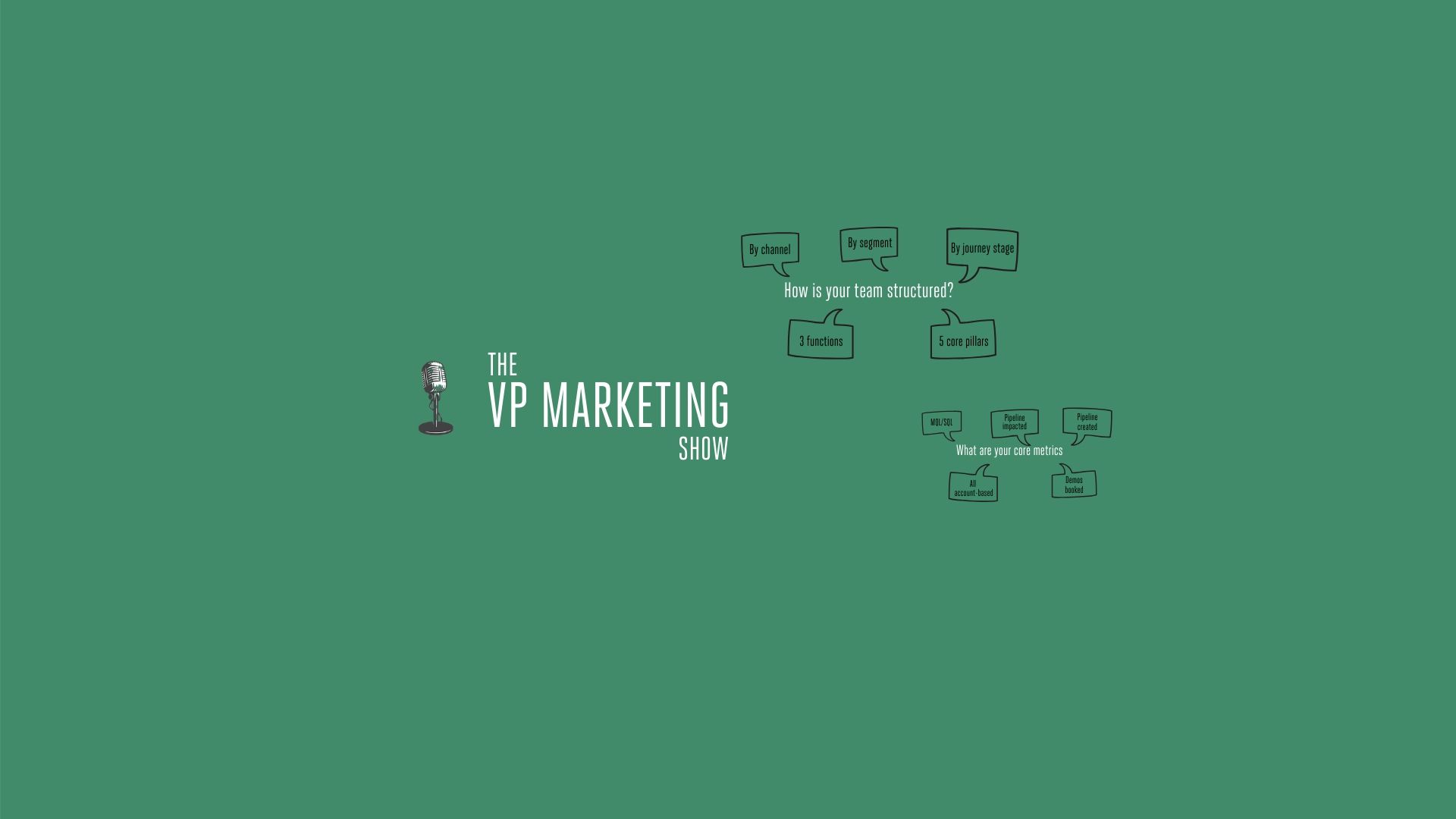 The VP Marketing Show